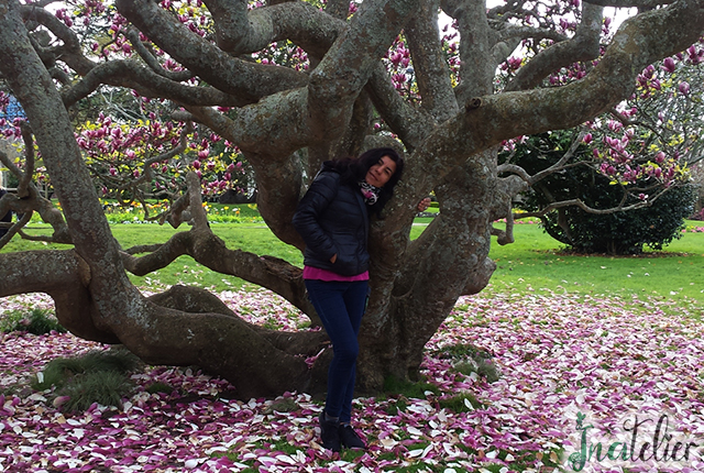 Azi este o noua zi...Copacul Vietii